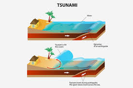 interesting information and tsunami facts for