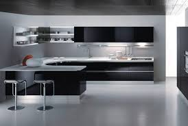 Black Or White Kitchen Cabinets Kitchen Cabinets Black And White Photo Gallery For Photographers