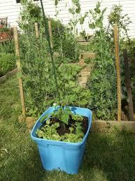 20 vertical vegetable garden ideas home design build a from