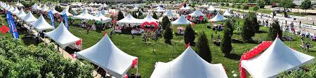 linen rentals dallas tent rentals in dallas tx canopy rental wedding rentals in