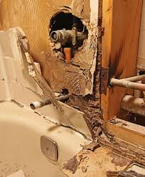 Black Mold Bathroom Diy Bathroom Remodeling Tips Guide Help Do It Yourself Techniques