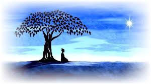 symbolism trees yoga asana symbols for yoga teachers art pinterest asana