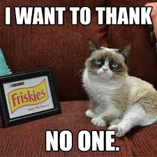 No Grumpy Cat Meme - grumpy cat friskies thank no one why evolution is true