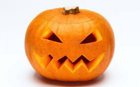the best pumpkins of instagram the telegraph