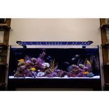 current usa orbit marine aquarium led light current usa orbit marine ic pro light fixture only 48 to 60
