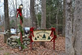 focus on killingworth ct and surrounding towns christmas at