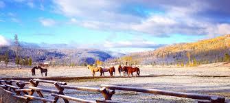 all inclusive resort rates in colorado vista verde ranch