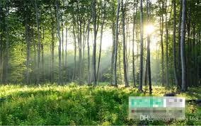Sho Natur custom photo wallpaper 3d green forest nature scenery murals living