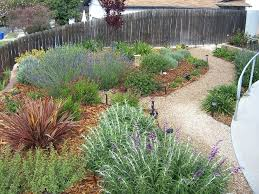 find this pin and more on front yard drought tolerant landscape