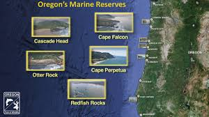Map Of Brookings Oregon by Special Areas Oregon Tide Pools