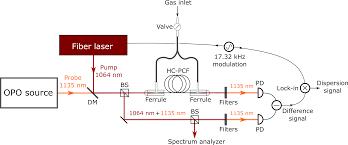 laser spectroscopy in hollow u2010core fibers principles and