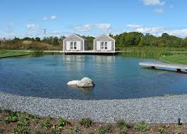 Natural Swimming Pool Natural Swimming Pools Design Ideas Inspirations Photos