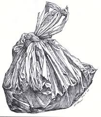 25 unique observational drawing ideas on pinterest natural
