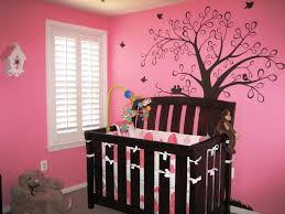 best pink paint colors imanada teens room girls ideas along with