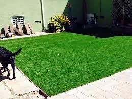 Backyard Landscaping Ideas For Dogs Artificial Grass Orchard City Colorado Indoor Dog Park Backyard