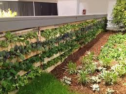 lawn u0026 garden 7 creative ways to plant a vertical garden ideas