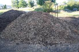 pick a good mulch groundcover for your yard oregon state