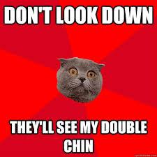 Anxiety Cat Memes - pin by amanda jones on anxiety is life pinterest chronic anxiety