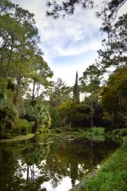 Canopy Roads Baptist Church Tallahassee by 32 Best Images About Tally On Pinterest Gardens Boat Tours And