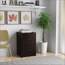 File Cabinets On Wheels Furniture Awesome Plastic File Cabinet Wood 2 Drawer File