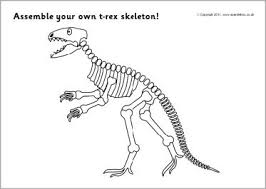 assemble rex dinosaur skeleton sb4272 sparklebox