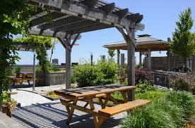 terrace gardening a beginner s guide to terrace gardening interior design ideas