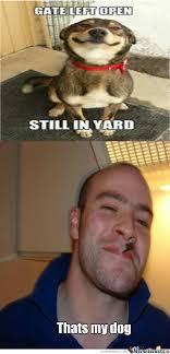 Good Guy Meme - good guy greg s dog by gizmoman777 meme center