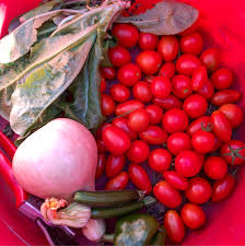 colorful food oct 2 garden farvest