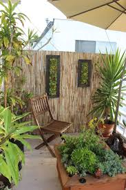 78 best one with plants living walls images on pinterest living