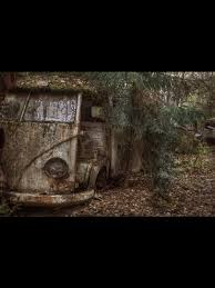 vw schwimmwagen found in forest 170 best vw wrecks images on pinterest vw beetles vw bugs and