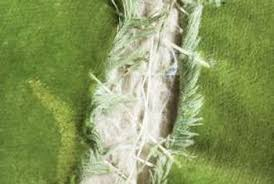 How To Repair A Leather Sofa Tear How To Repair Sofa Fabric Home Guides Sf Gate