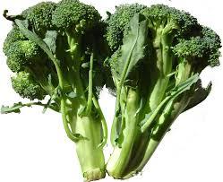 plants native to england eat live grow paleo vegetables broccoli