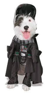 Star Wars Dog Halloween Costumes 20 Absolutely Amazing Dog Halloween Costumes Style Motivation