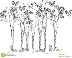 sketch of trees stock vector image of simple decoration 46887211
