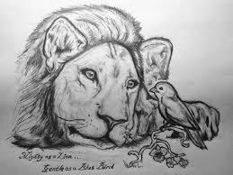 tribal lion tattoo sketch on paper tattooshunter com