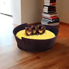 most amazing ideas to make cool cozy bed for your cat