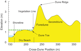 Generic Mapping Tools Delineating Beach And Dune Morphology From Massive Terrestrial