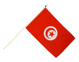 Best National Flags Tunisia Hand Waving Flag 12 X 18 Inch Best Buy Flags Co Uk