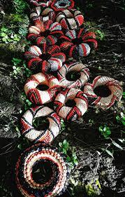 11 best мозаика из круп images on pinterest nature crafts seeds