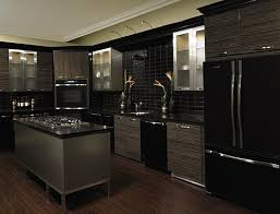 Black Kitchen Cabinet Ideas by Black Kitchen Cabinets With Black Appliances Outofhome