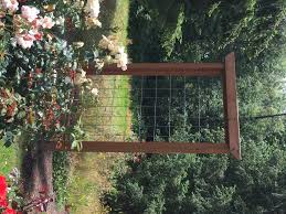 climbing rose trellis design u2013 home furniture ideas