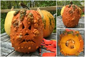carve a cooler pumpkin this halloween stab into a jarrdale polar