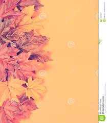 vintage halloween backgrounds retro vintage filter autumn leaves on modern trend orange