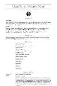 Buyer Resume Examples 100 Merchandiser Resume Sample Buyer Resume Buyer Resume Sample