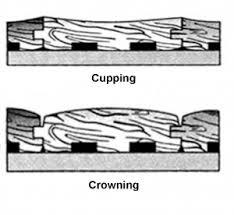 cupping crowning wood floors wichita ks servicemaster