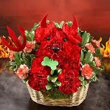 Dog Flower Arrangement Absecon Nj Flower Delivery South Jersey Florist