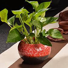 personalized flower pot online get cheap personalized flower pot aliexpress alibaba