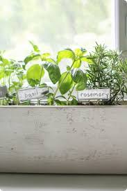 Herb Window Box Indoor How To Create A Beautiful Kitchen Herb Garden Lovely Etc