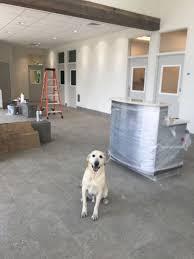 Floored by We Are Floored University Veterinary Hospital