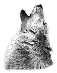 293 best watercolor pen ink u0026 sketches images on pinterest